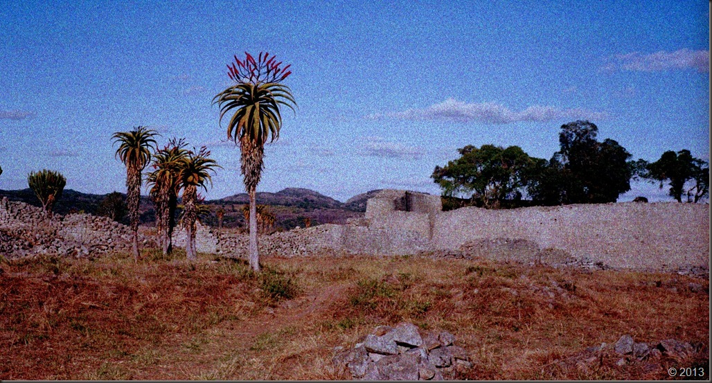 aloes and Great Zimbabwe