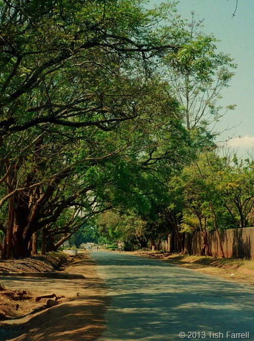 Sable Road in the dry season 2