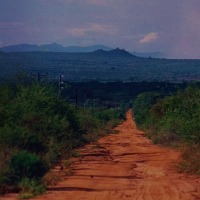 No way back from Africa: the road to Hunter's Lodge