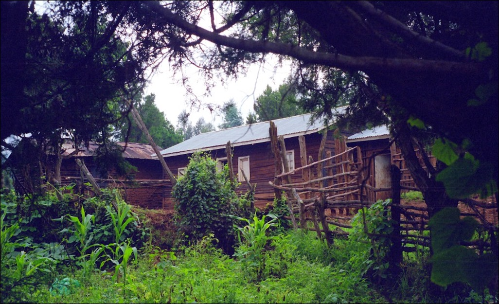 Kikuyu farmstead 1