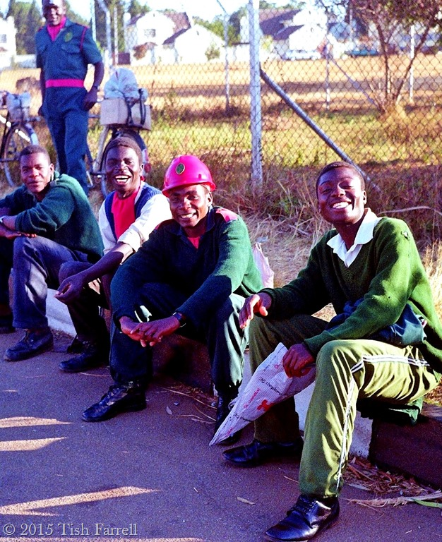 industrial democracy in zimbabwe Democracy in zimbabwe:  independence indigenous industrial inherited institutions issues joshua nkomo land launched leaders liberal democracy major mandaza middle .