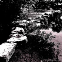 Stepping Stones Through Time