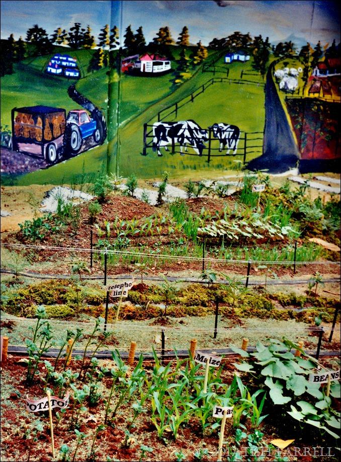Agri show 1995 c_0006