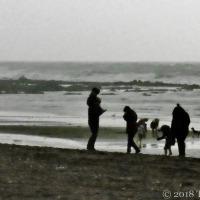 Portraits Anonymous ~ On Winter Beaches