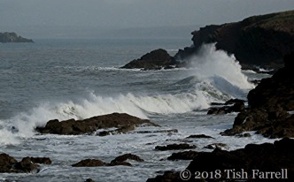 IMG_3184-seascape.jpg