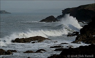 IMG_3184-seascape_thumb.jpg