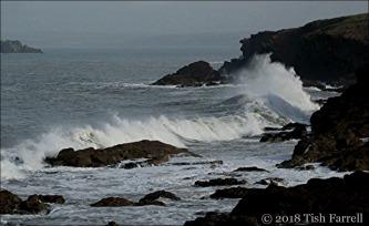 IMG_3184-seascape_thumb.jpg