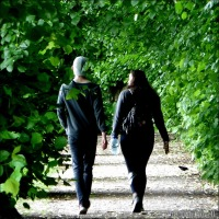 The Linden Walk ~ A Leafy Arcade