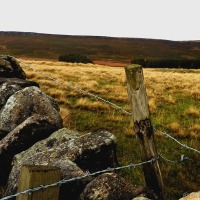 On Derbyshire's Moors And A Change In The Weather