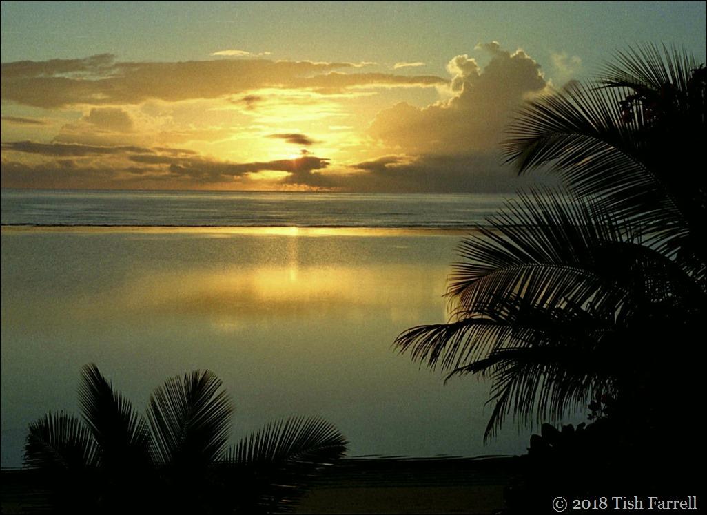 sunrise on the reef