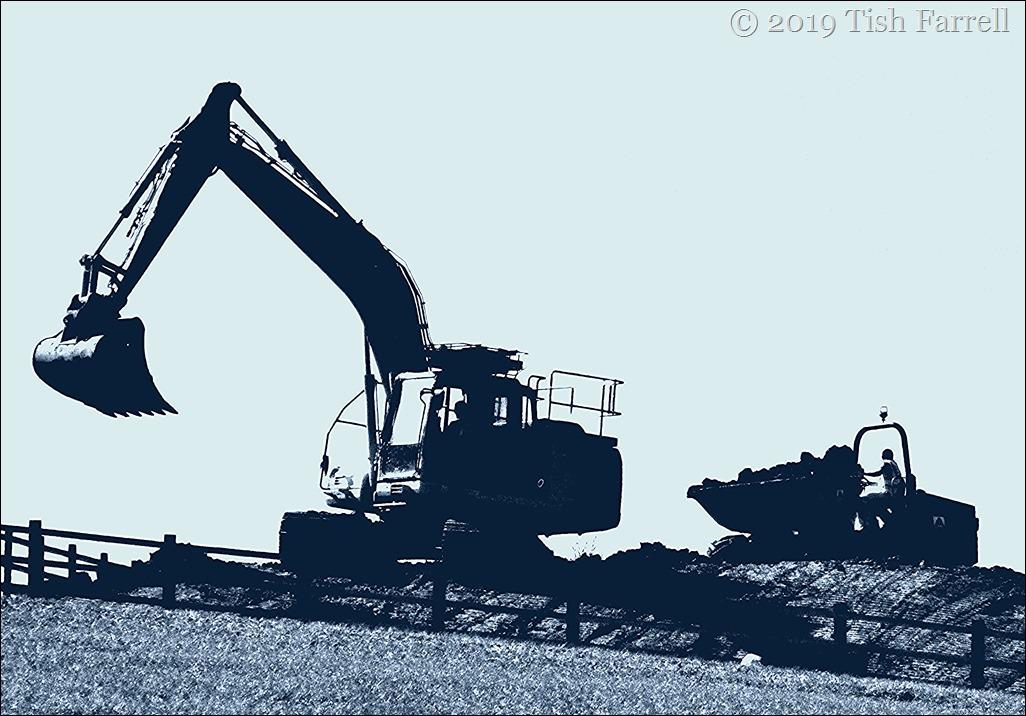 P1070549ex