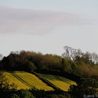 The Changing Seasons ~ This Was Wenlock In May