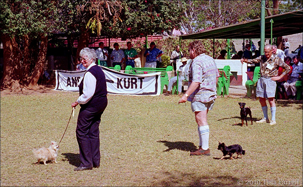 Lusaka agricultural show - Dog Show