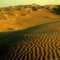 Dubai Desert: Sand-Lines