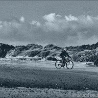 The Beach Bicyclist