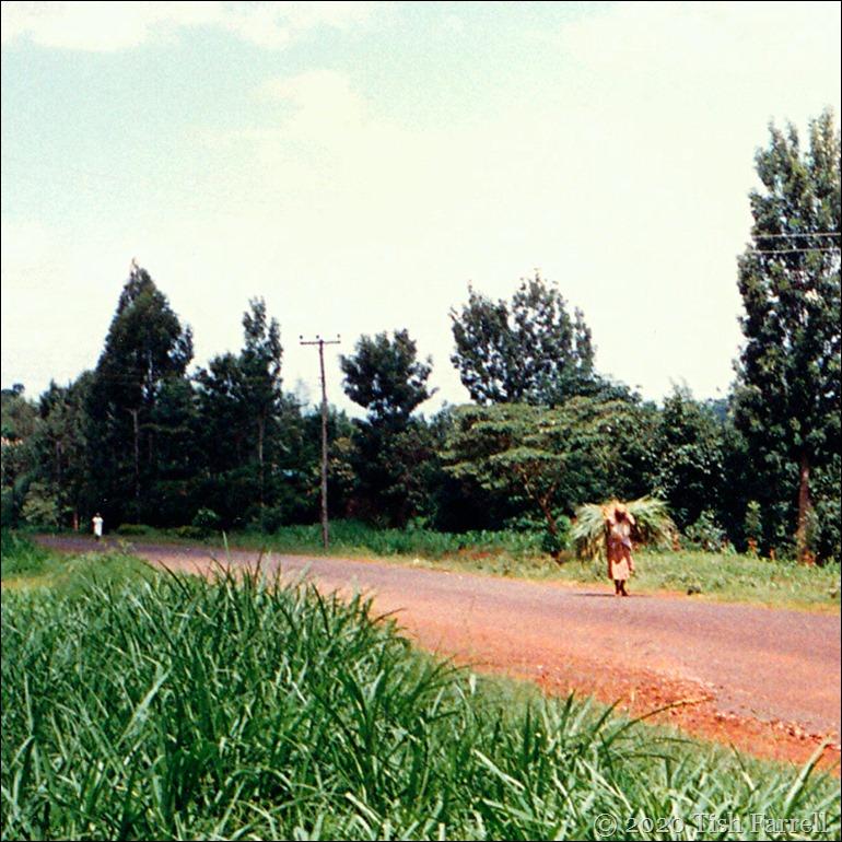 IMG_0011 Muranga