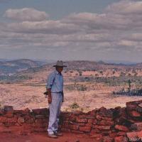 Did We Dream Great Zimbabwe?