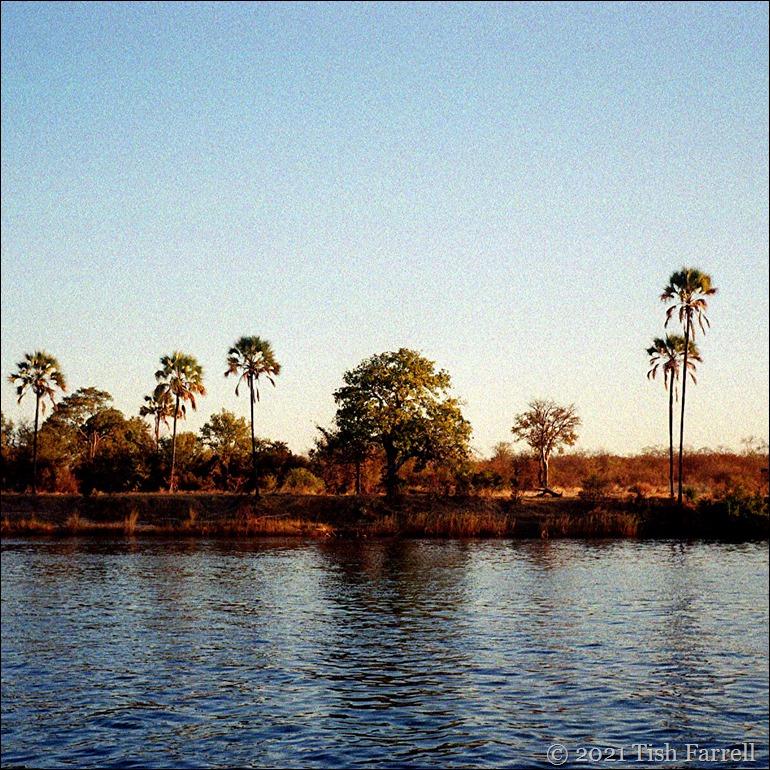 Zambezi sundowner trip