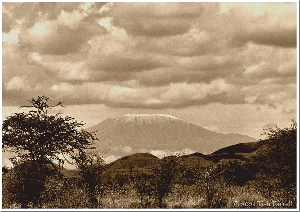 Kilimanjaro from Mombasa Highway sepia