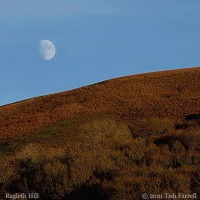 Seasons Past ~ In The Shropshire Hills